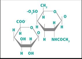 Strukturformel_Chondroitin